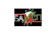 Становище на Българска асоциация на малките и средни предприятия по Законопроект за държавния бюджет на Република България за 2021 г.